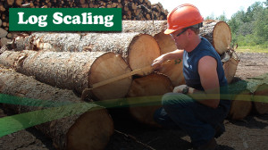 Scaling Course - Continuing Education