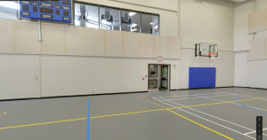 Gym and Fitness Area