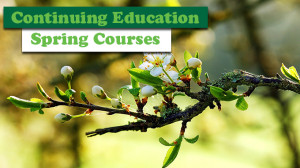CE Spring Courses Banner
