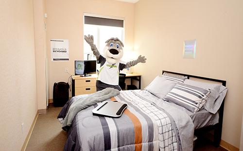 Rooms For Rent Near Algonquin College Algonquin College